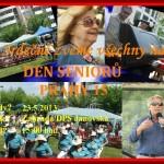 Den_senioru_2013